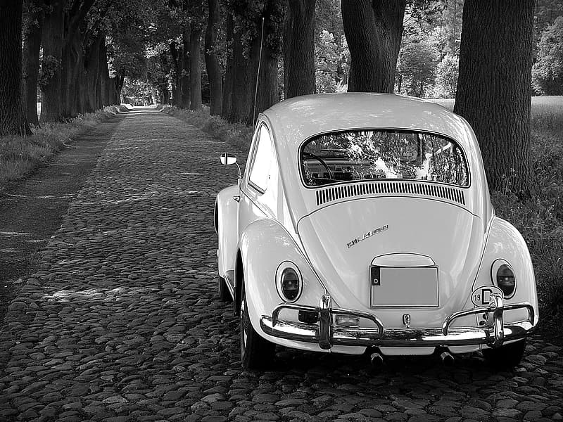 Grayscale photography Volkswagen Beetle coupe parked between trees