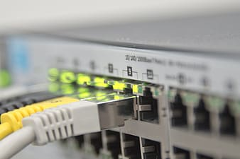 Close up photo white ethernet switch hub outlet