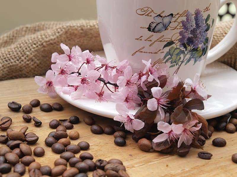 Pink flowers near the coffee beans