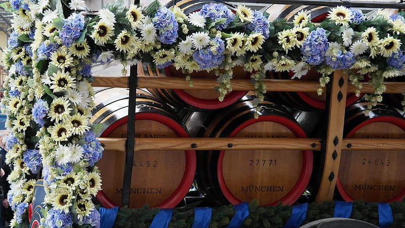 Yellow and white flowers on brown wooden barrels