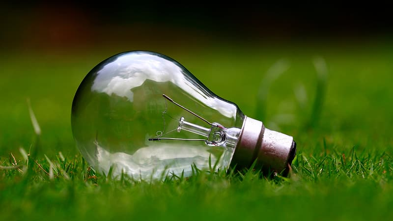 Light bulb on grass field during daytime