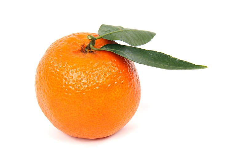 Orange fruit screenshot with two opaque leaf