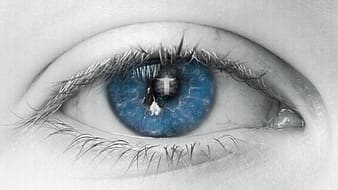 Closeup photography of human blue eye