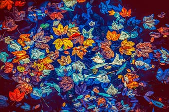 Blue and red flowers painting