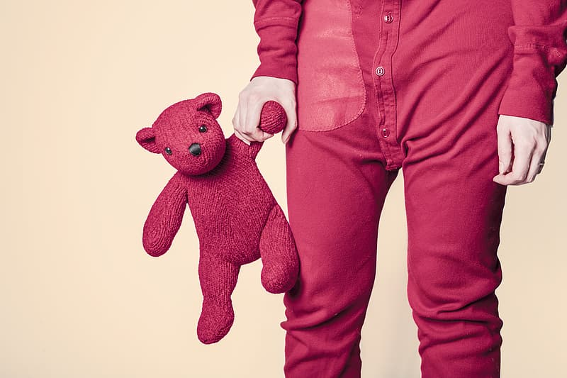 Person holds pink teddy bear