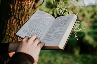 Person reading book on brown and green leaves