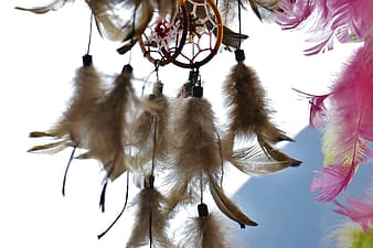 Brown dream catchers