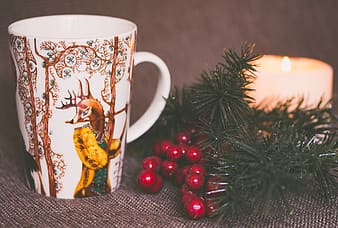 Selective focus photography of white and brown mug beside green spruce leaf