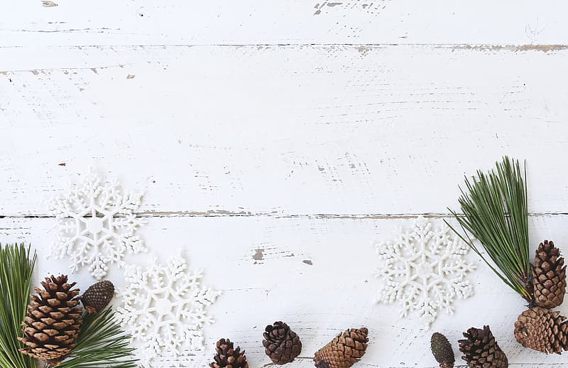 Pine cones and snowflakes background