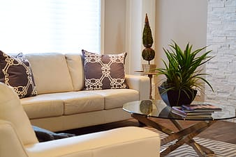 Yellow leather sofa beside coffee table with plant