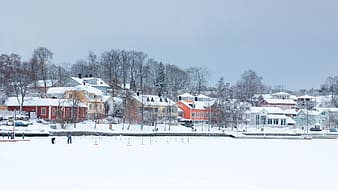Houses covered with snow