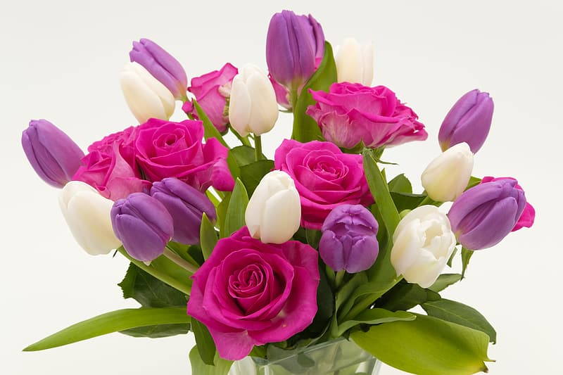 Pink, white, and purple rose and tulip flower