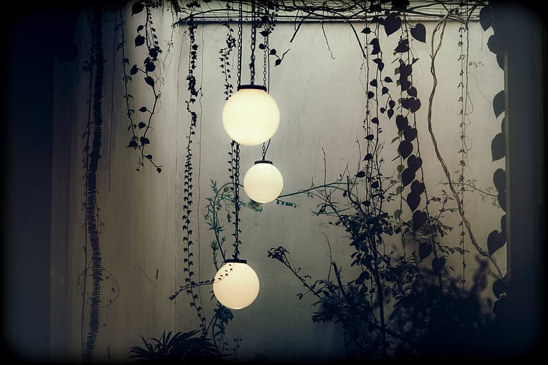 Three round pendant lamps hanged under roof with silhouette of vines