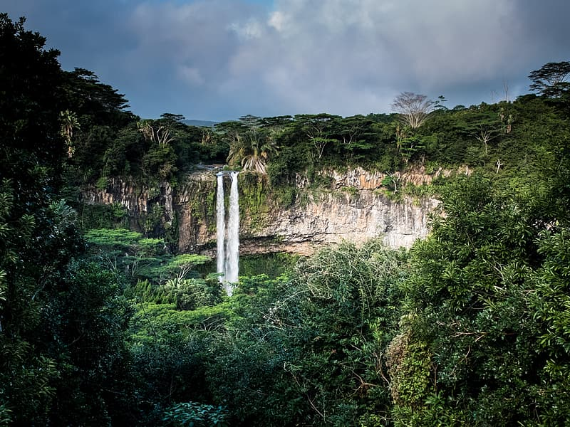 Waterfalls in the middle of green trees under gray sky