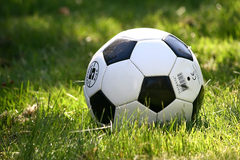 Soccer ball on green grasses during daytime