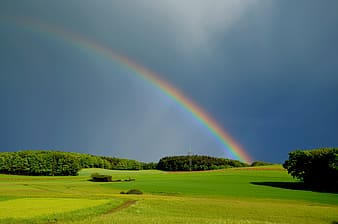 Photo of rainbow with trees and grasses during daytime
