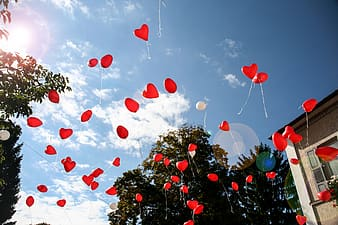 Floating red heart balloons