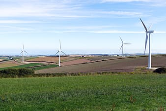 Four white windmills in middle of field