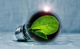 Illustration of light bulb with green leaf