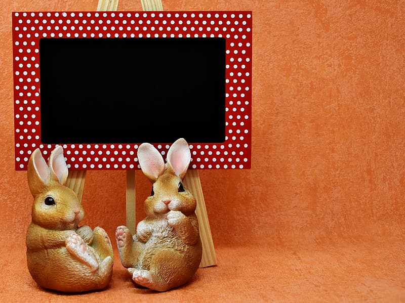 Photo of two brown bunny beside easel with board
