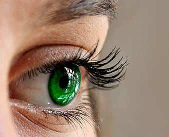 Close-up photo of human green eye