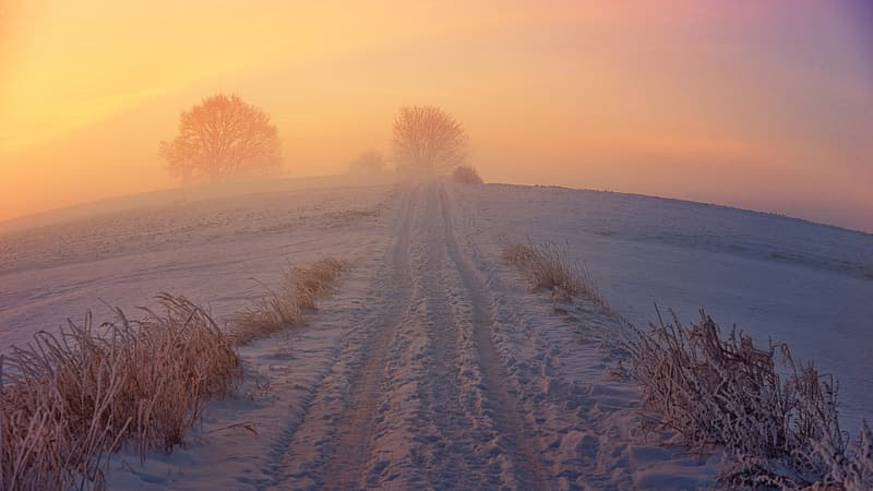 Snow covered field during sunset