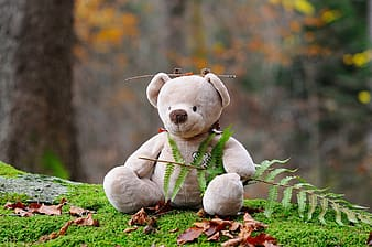 Shallow focus photography of brown bear plush toy holding green plant during daytime