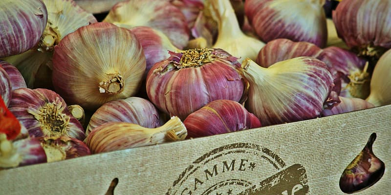 Red onions on crate