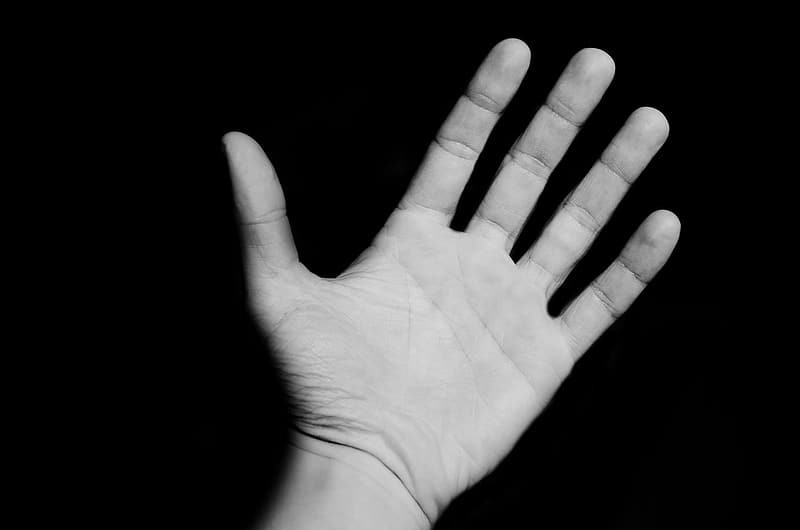 Grayscale photography of human left hand