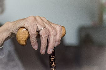 Person holding brown wooden stick