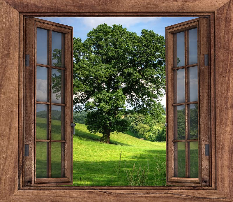 Closeup photography of brown wooden open window front of green leaf tree