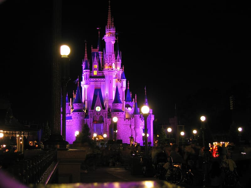 Blue and pink lighted castle