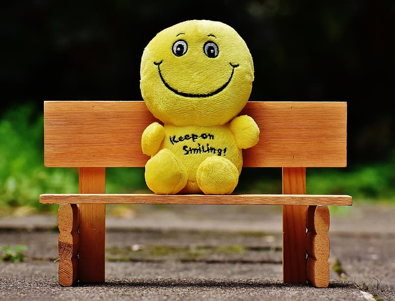 Yellow plush toy on brown wooden bench