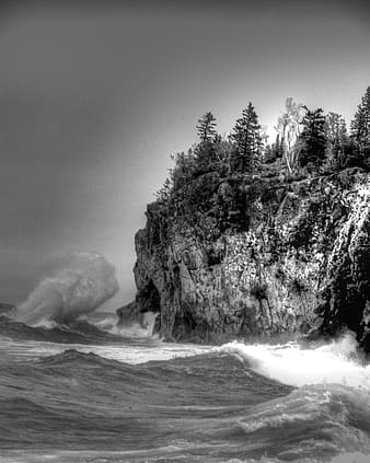 Grayscale photo of trees on rock formation near sea
