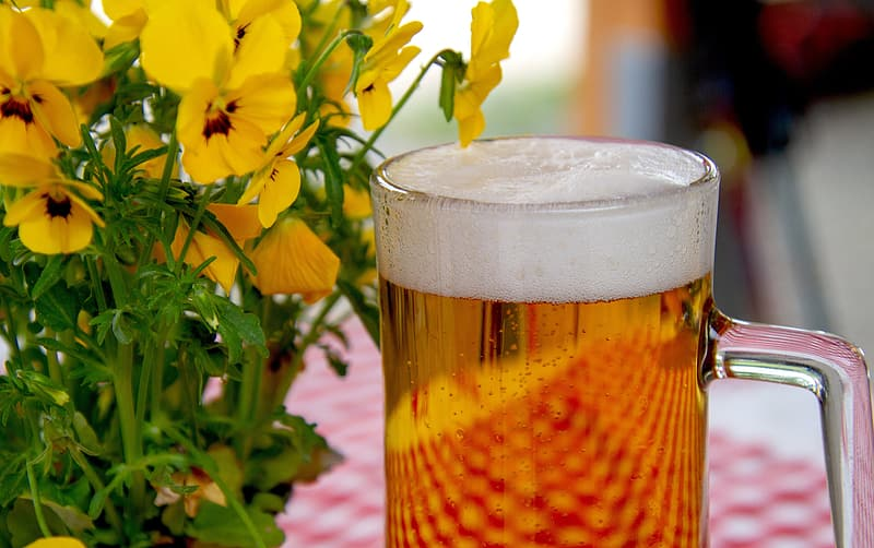 Clear beer mug near yellow flowers