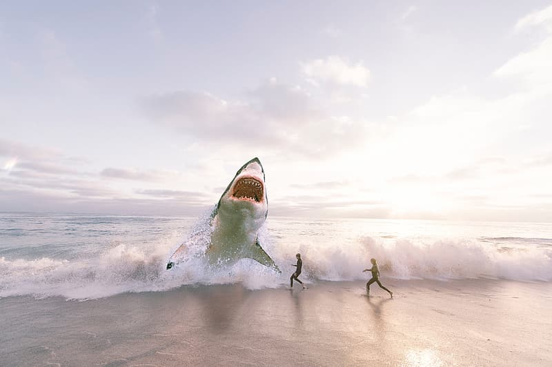 Edited photo of great white shark on shore in front of two people running