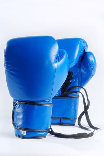 Pair of blue boxing gloves