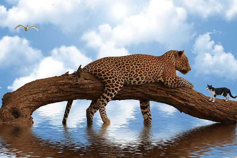 Leopard on brown tree branch during daytime
