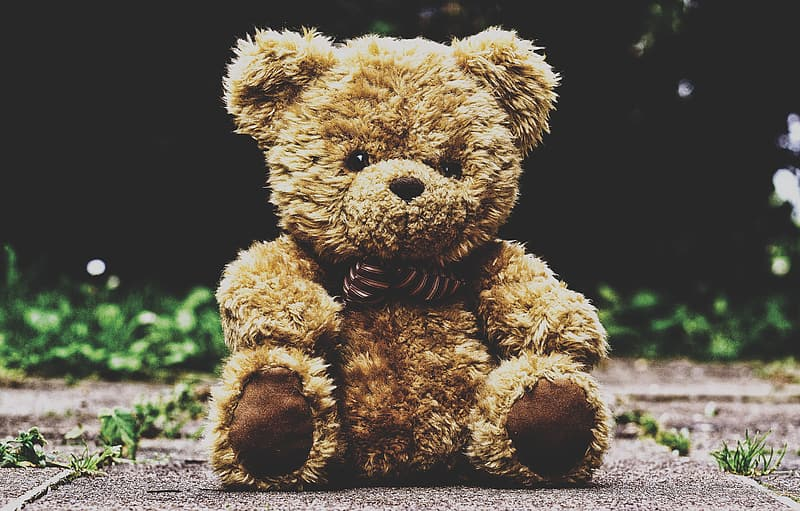 Brown teddy bear on black background