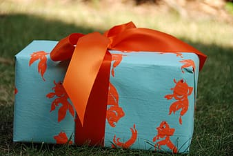 Teal and orange fairy print gift box on the ground