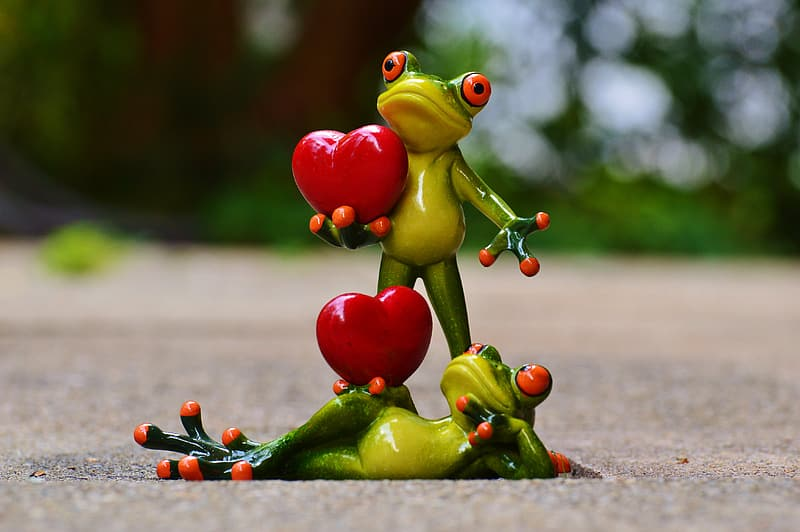Two frog with heart