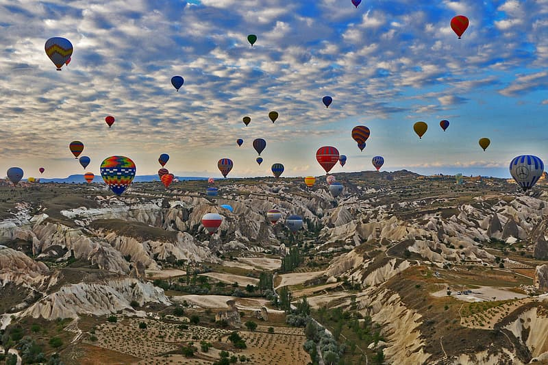 Assorted color hot air balloons flying over countryside