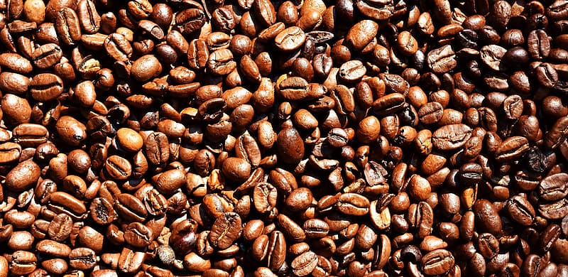 Top-view photo of pile of coffee beans