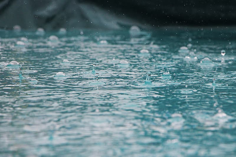 Photography of water drops