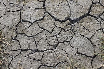 Close up photography of crack soil