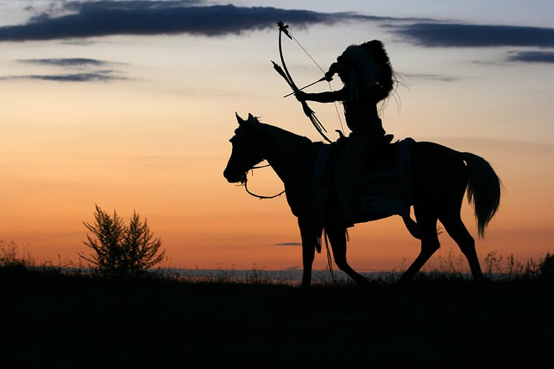 Silhouette photo of man riding horse during golden hour