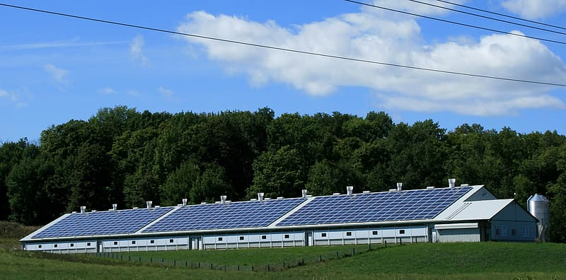 White building filled with solar panels surrounded by trees