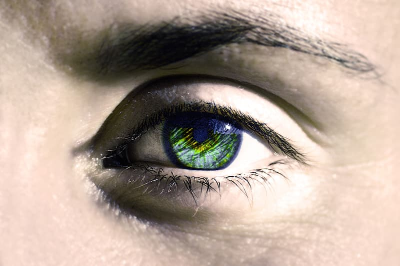 Persons eye with green eyes