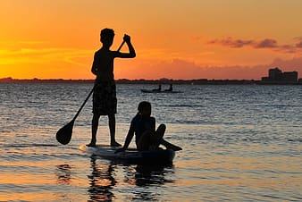 Silhouette of man rowing boat
