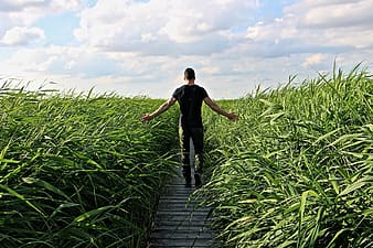 Man walking on pathway surrounded by grass